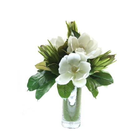 Magnolia proteas arrangement