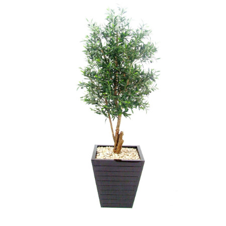 Olive Tree in plank planter web
