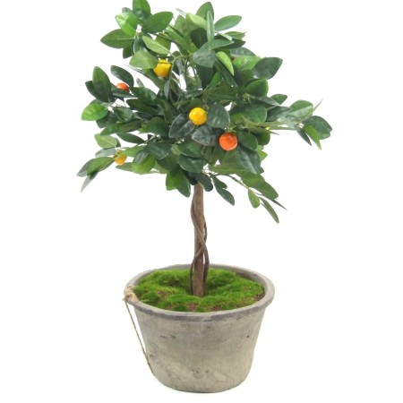 Small fruit topiary