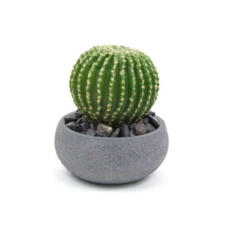 Barrel Cactus web