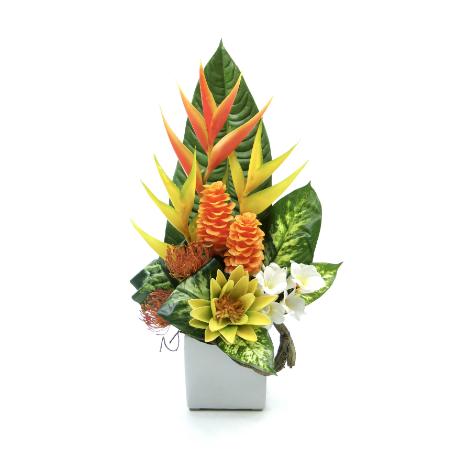 medium tropical 2