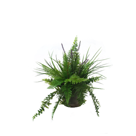 mixed fern in alloy pot